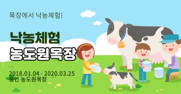 [가족나들이]용인 농도원목장 Milk School 낙농체험