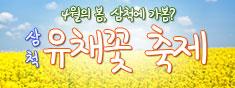 4월의 봄, 삼척에 가봄? 봄향기 물씬 풍기는 삼척에서 즐기는 노오란 유채꽃 페스티벌~ 해상케이블카 타고 바다위 여행!