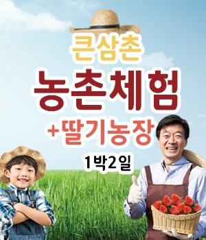큰삼촌 농촌체험 + 딸기체험(조청딸기잼만들기+얼음썰매+오징어야채전부치기)