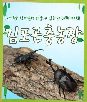 김포곤충농장 자연생태체험